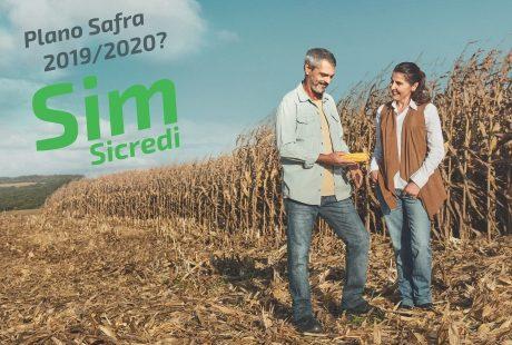 Projeção de crescimento do Sicredi no RS para o Plano Safra 2019/2020 acompanhará tendência nacional da instituição